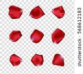 Stock vector set of rose petals 568612183