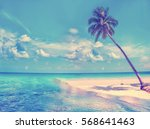 paradise nature  palm trees on... | Shutterstock . vector #568641463