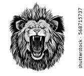 wild cat king lion roaring lion | Shutterstock . vector #568715737