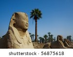 sphinx at the luxor temple