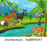 wild animals standing by the... | Shutterstock .eps vector #568895047