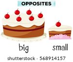 opposite wordcard for big and... | Shutterstock .eps vector #568914157