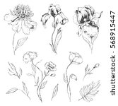 Set Of Hand Drawn Flowers....