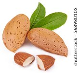 Almonds Isolated In Close Up O...