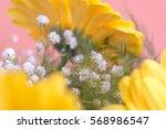 yellow gerbera   Shutterstock . vector #568986547