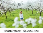spring orchard | Shutterstock . vector #569053723