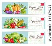 vegetables banners set of... | Shutterstock .eps vector #569174113