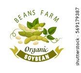 Soybean Vector Poster. Organic...
