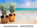pineapple with sunglasses on... | Shutterstock . vector #569235553
