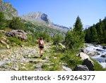 Mountain Walking In A Beautifu...