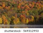 Fall Foliage. Ramapo Valley...