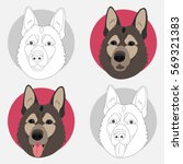 dog icon. set of 4 pieces.... | Shutterstock .eps vector #569321383