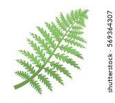 prehistoric plant icon in...   Shutterstock .eps vector #569364307