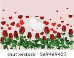 beautiful red flowers. roses... | Shutterstock .eps vector #569469427