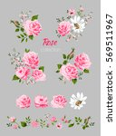 beautiful isolated pink flowers ... | Shutterstock .eps vector #569511967