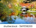 wakayama castle in the park in...   Shutterstock . vector #569558203