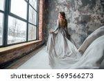 beautiful woman in grey evening ... | Shutterstock . vector #569566273