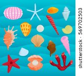 sea marine animals and shells... | Shutterstock .eps vector #569702503