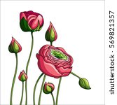 card with pink peony | Shutterstock .eps vector #569821357