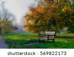 Bench In A Park By A Tree In...