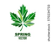 Vector Stylize Logo With Green...