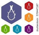 dragon fruit icons set rhombus... | Shutterstock .eps vector #570447187
