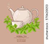 melissa tea illustration   Shutterstock .eps vector #570620053