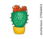 hand drawn cactus with flowers... | Shutterstock .eps vector #570646813
