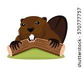 beaver on a white background. | Shutterstock .eps vector #570777757