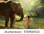 Girl Was Playing Elephants - Fine Art prints