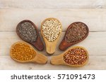 millet form a group of several... | Shutterstock . vector #571091473