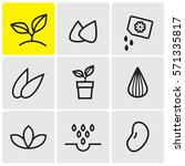 sprouts and seeds icons | Shutterstock .eps vector #571335817