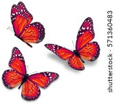 three red monarch butterfly... | Shutterstock . vector #571360483
