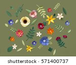 Flower Plant Floral Nature...