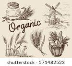 set of fresh bread in basket... | Shutterstock .eps vector #571482523