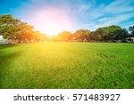 green grass on a golf field   Shutterstock . vector #571483927