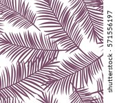 Purple Palm Leaves On A White...