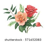 hand painted watercolor... | Shutterstock . vector #571652083
