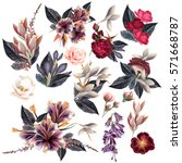 big collection of flowers in... | Shutterstock .eps vector #571668787