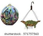 doodle art garden terrariums... | Shutterstock .eps vector #571757563