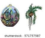 doodle art garden terrariums... | Shutterstock .eps vector #571757587