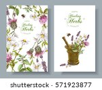 Stock vector vector vertical wild flowers and herbs banners with mortar design for herbal tea natural 571923877