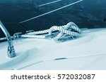 close up nautical knot rope...   Shutterstock . vector #572032087