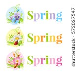 flower spring logo isolated on... | Shutterstock .eps vector #572037547