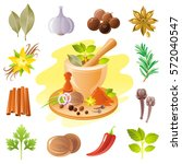 spice herb icons. healthy food... | Shutterstock .eps vector #572040547