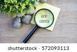 ornamental trees  stones small  ... | Shutterstock . vector #572093113