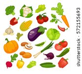 vegetables icons set.... | Shutterstock .eps vector #572155693