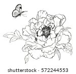 chinese style drawings ... | Shutterstock . vector #572244553