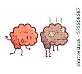 brain human internal organ... | Shutterstock .eps vector #572308387