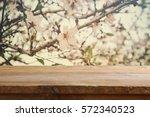 wooden rustic table in front of ... | Shutterstock . vector #572340523